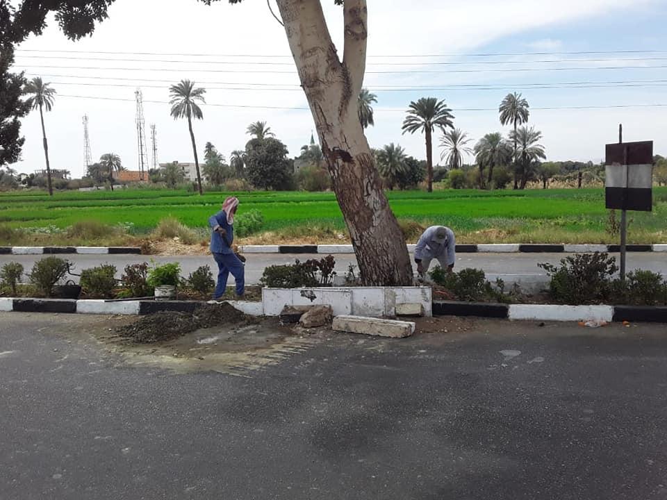 المسارات السياحية المؤدية إلى مقابر وادى الملوك والملكات ومعبد حتشبسوت (8)