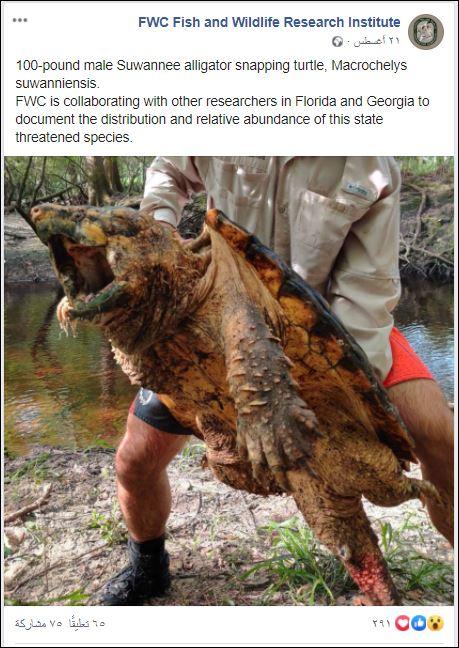 معهد أبحاث الأسماك والحياة البرية عبر فيس بوك