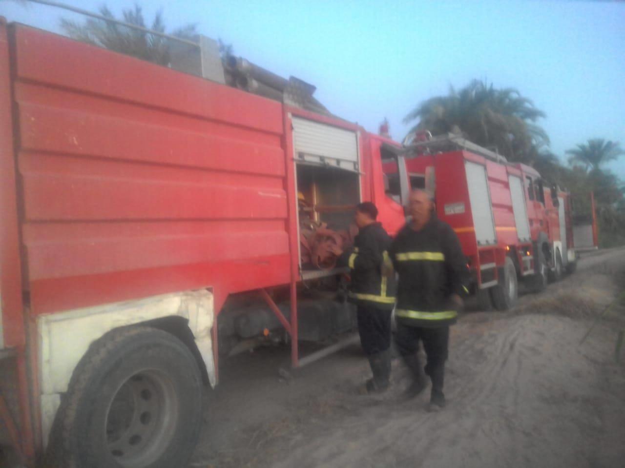 حريق يلتهم 20 فدان  نخيل وأشجار بأسيوط  (2)