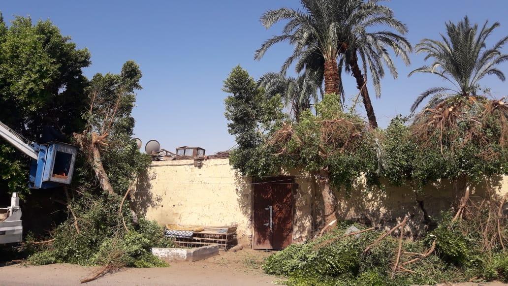 السياحة أولاً وأخيراً فى محافظة الأقصر (17)