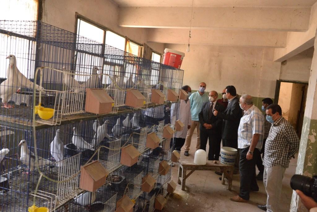 رئيس الجامعة خلال زيارته لمزارع الدواجن والماشية  (13)