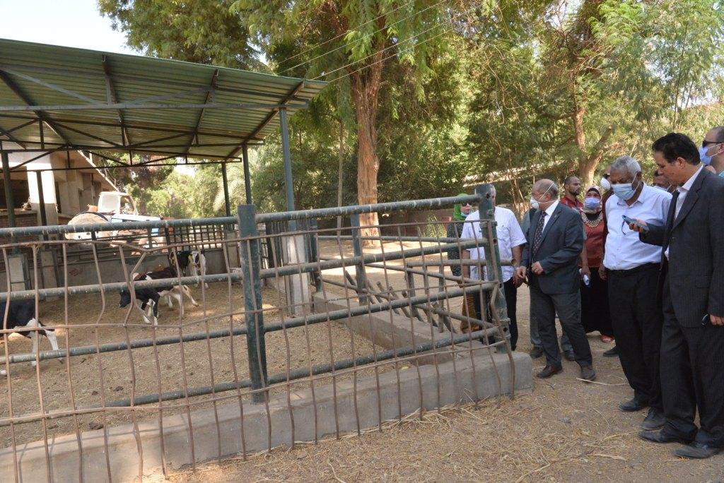 رئيس الجامعة خلال زيارته لمزارع الدواجن والماشية  (2)