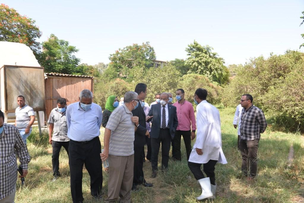 رئيس الجامعة خلال زيارته لمزارع الدواجن والماشية  (6)