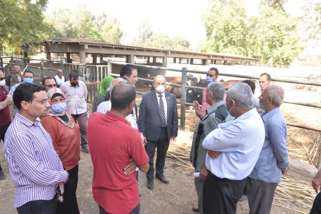 رئيس الجامعة خلال زيارته لمزارع الدواجن والماشية  (1)