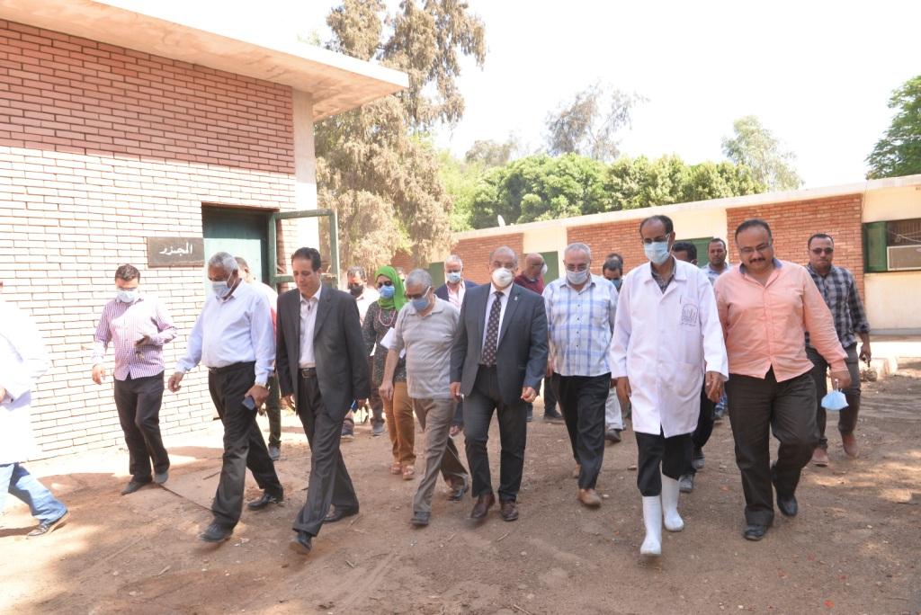 رئيس الجامعة خلال زيارته لمزارع الدواجن والماشية  (3)