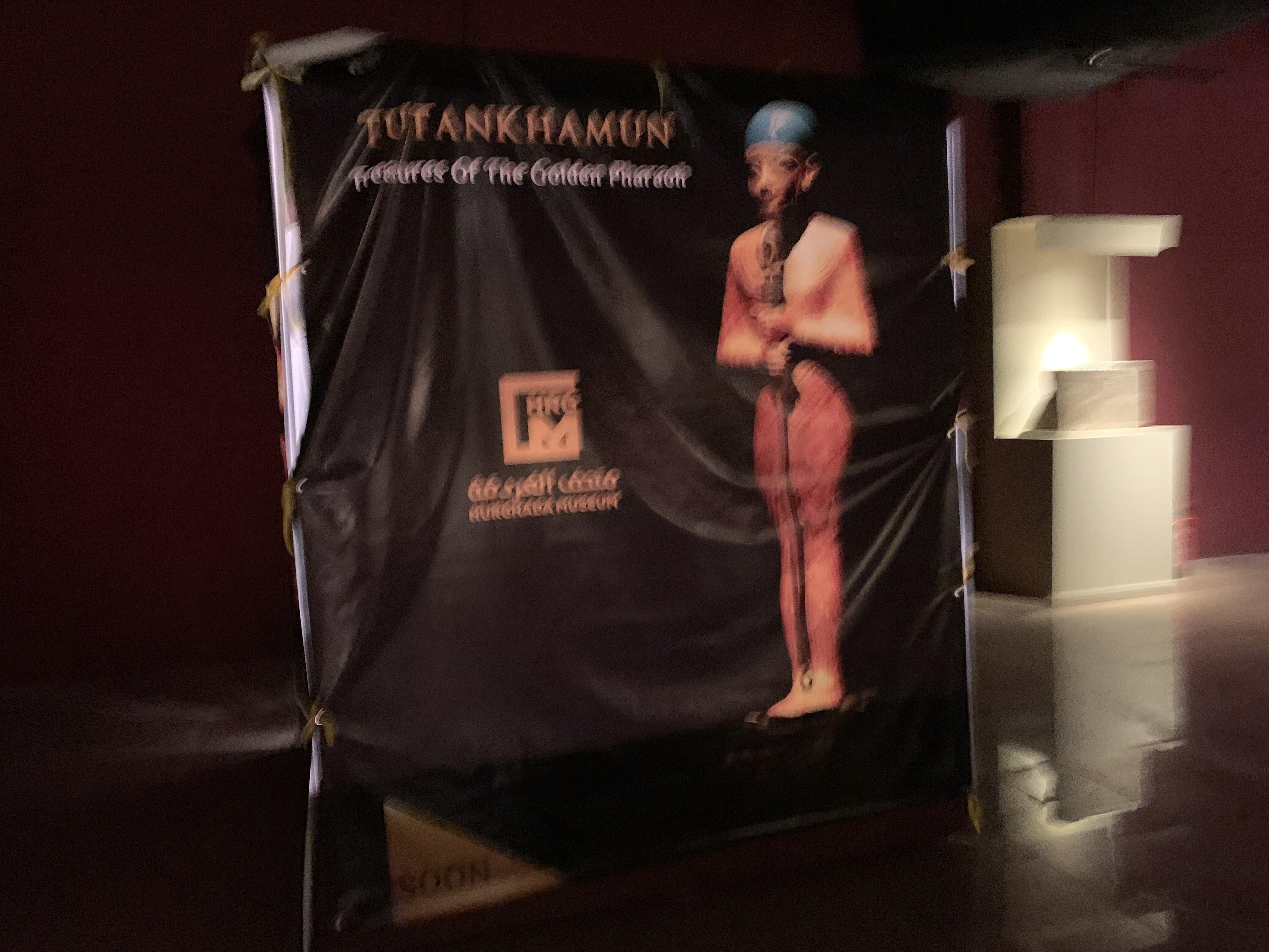 وزير السياحة يفتتح معرض مقتنيات الملك توت عنخ أمون  (1)