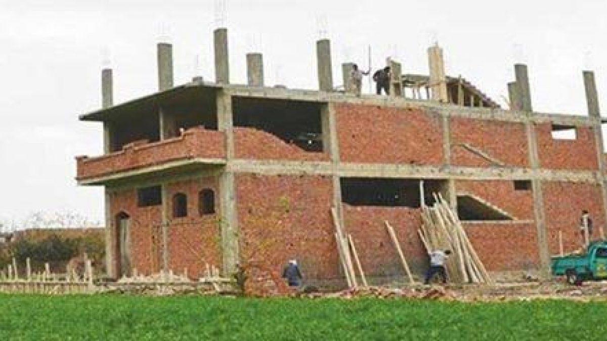 120461-120461-120461-مخالفات-البناء-على-الأراضي-الزراعية-1200x675