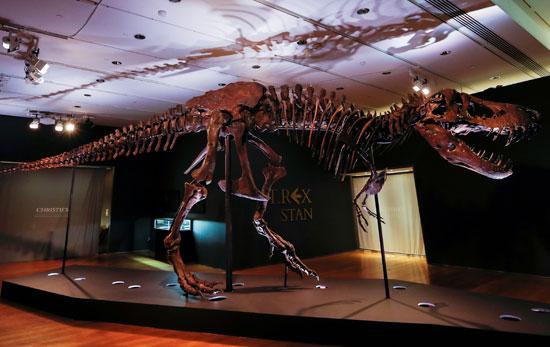 معرض كريستيز يعرض الهيكل العظمى للديناصور