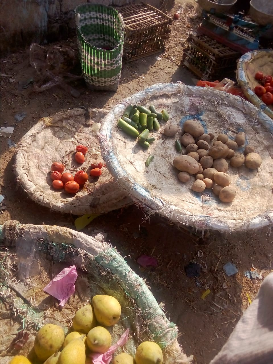 أغذية فاسدة بحملة مكبرة بالشرقية  (7)