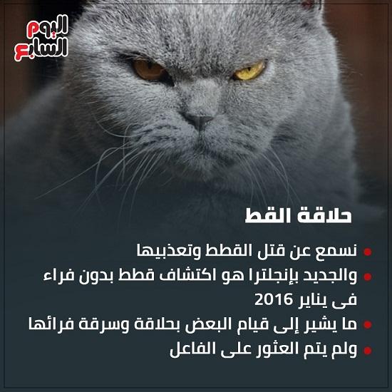 حلاقة القط