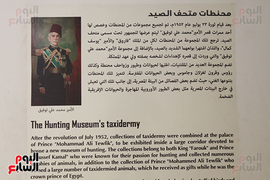 قصر محمد على بالمنيل (21)
