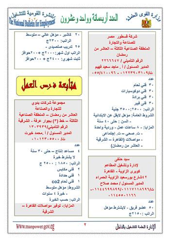 نشرة التوظيف (3)