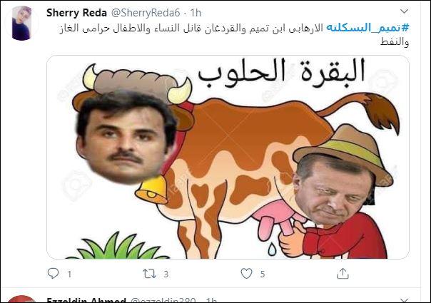 تميم البسكلته  (4)