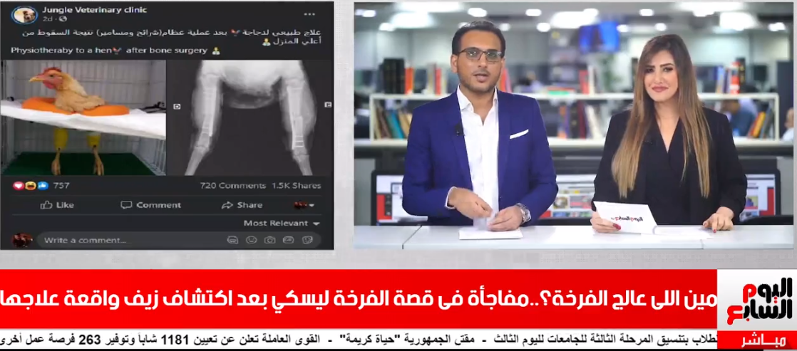 تامر إسماعيل ورغدة بكر1