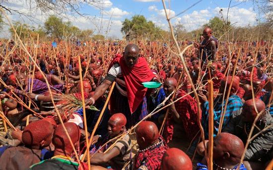 يعيش حوالي 1.2 مليون ماساي في كينيا