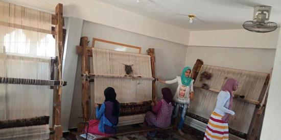 قرية باب العبيد بغرب الإسكندرية (2)
