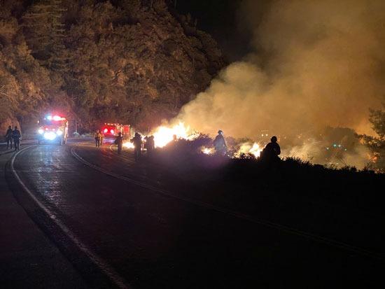 رجال الإطفاء تكافح حرائق الغابات