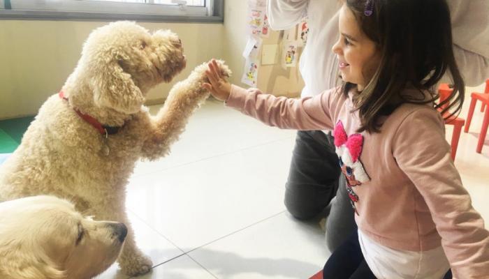 133-221001-corona-virus-schools-italy-dog-therapy_700x400