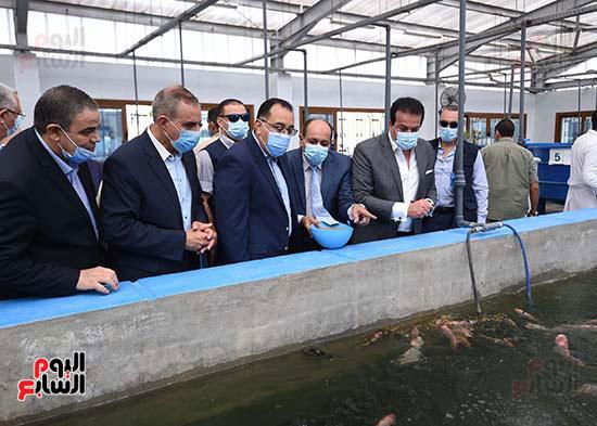 جولة رئيس الوزراء مصطفى مدبولى (6)