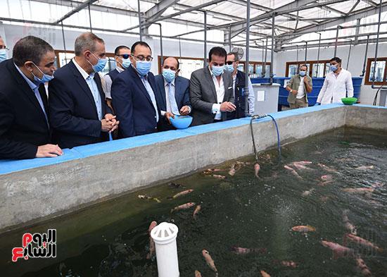 جولة رئيس الوزراء مصطفى مدبولى (7)