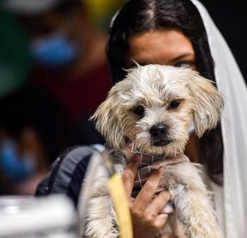 أحد رواد المقهى بصحبة كلبها