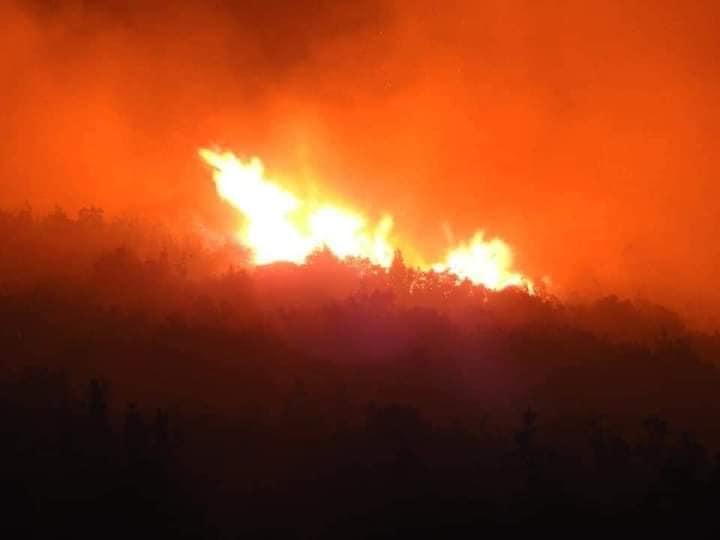 حريق هائل فى ريف مصياف 1