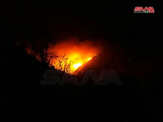 النيران تلتهم محمية الشوح بسوريا (1)