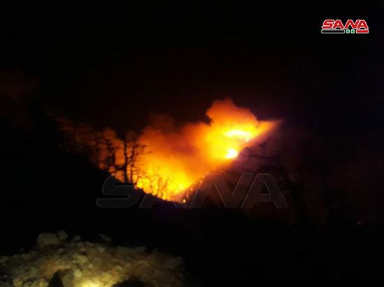 النيران تلتهم محمية الشوح بسوريا (4)