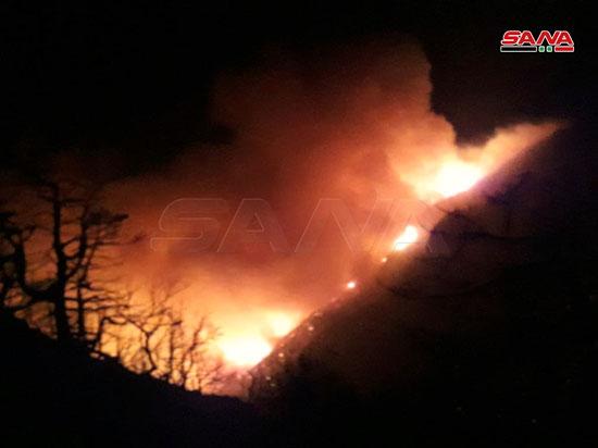 النيران تلتهم محمية الشوح بسوريا (3)
