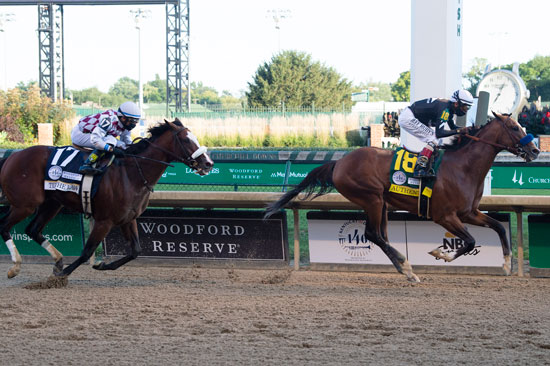 السباق مخصص للخيول المهجنة الأصيلة فى سن 3 سنوات