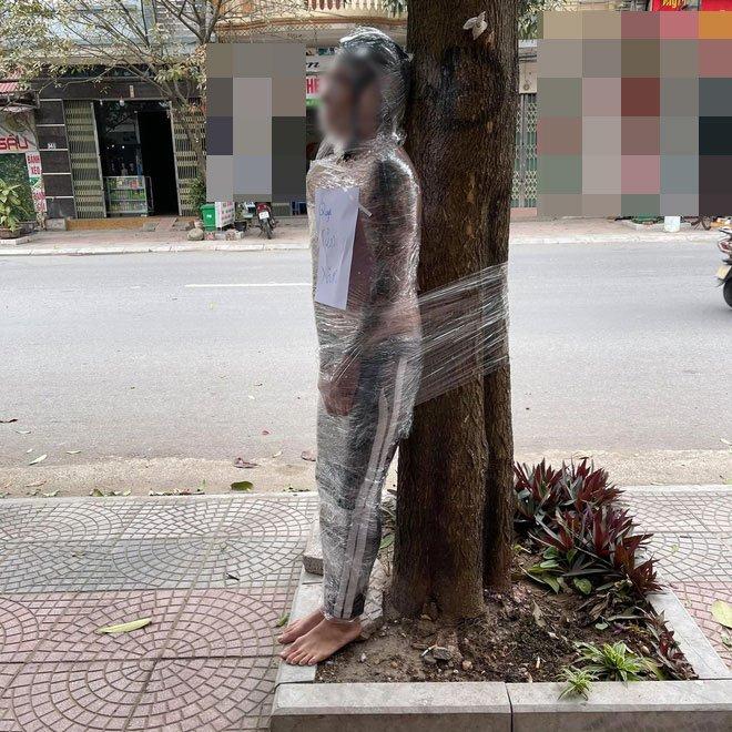 ربط الشاب فى الشجرة