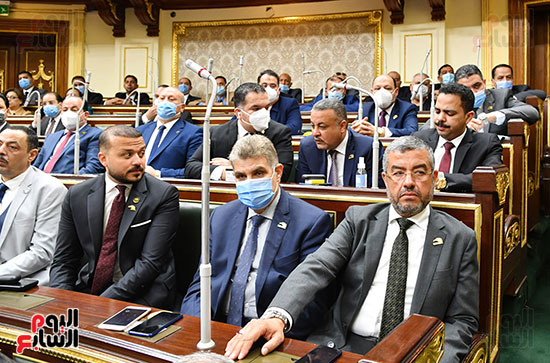 النواب عماد سعد حمودة ومحمد الجارحى