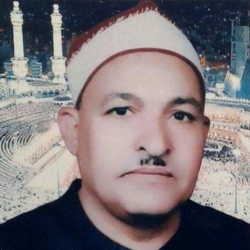 الشيخ عبد الرازق الجندالى