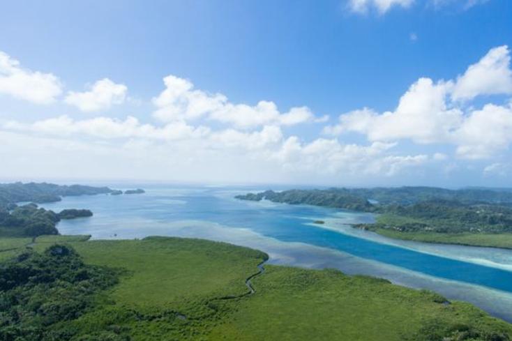 ميكرونيزيا