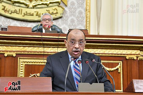 جلسه مجلس النواب - وزير التنميه المحليه (50)