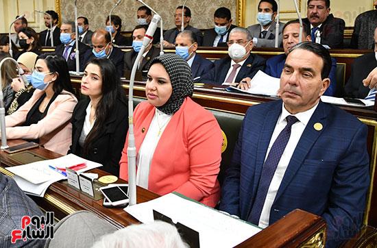 الحكومة امام البرلمان (29)