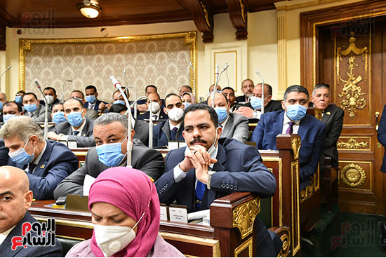 الحكومة امام البرلمان (21)