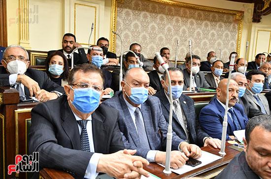 الحكومة امام البرلمان (24)