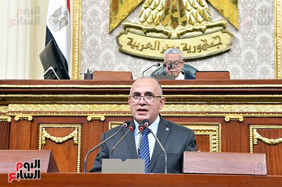 وزير الرى بالجلسة العامة