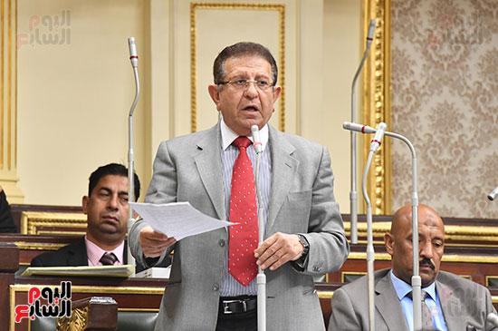 الجلسة العامة بمجلس النواب (4)