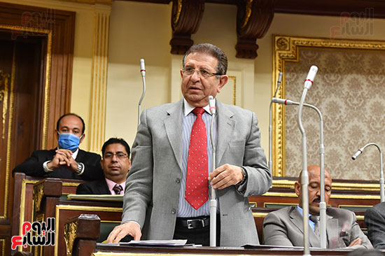 الجلسة العامة بمجلس النواب (3)