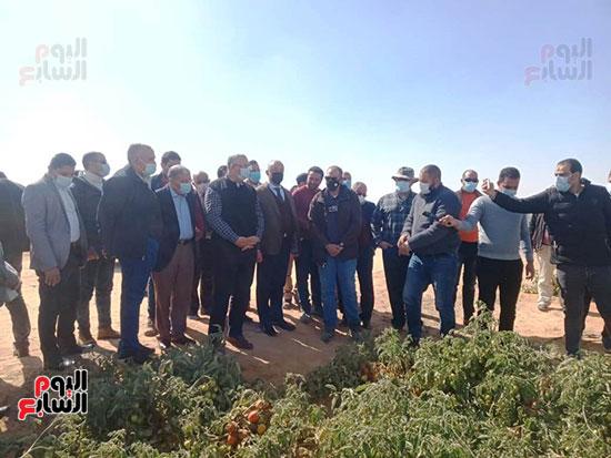 وزيرا الزراعة والرى يتفقدان مزرعة الطماطم (6)