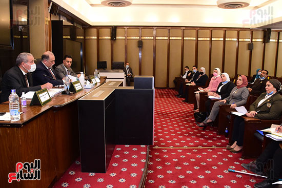 جانب من اجتماع اللجنة (4)