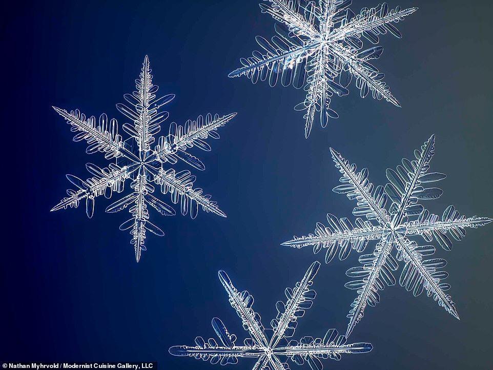 رقائق الثلج بتفاصيلها لأول مرة