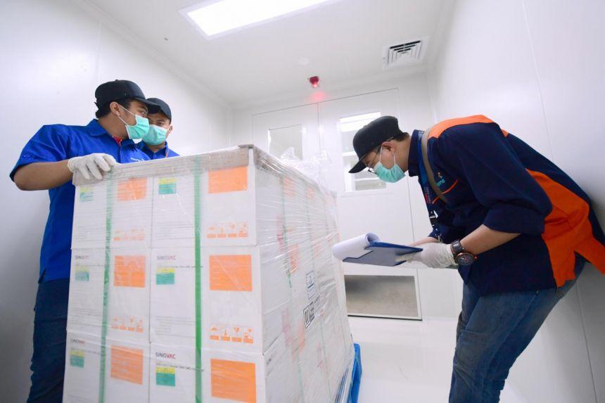 اللقاح الصينى