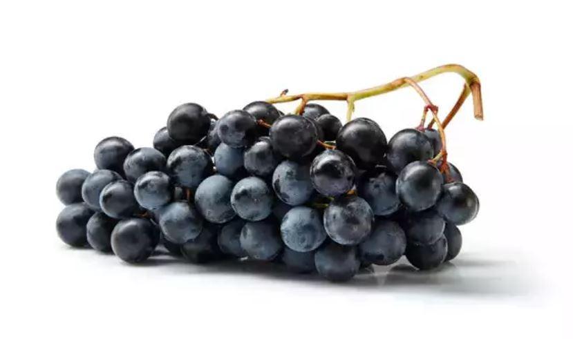 العنب الاسود