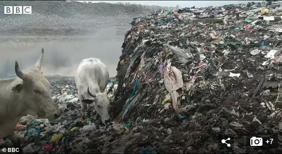 Environmental disaster in Ghana due to poor British clothing (6)