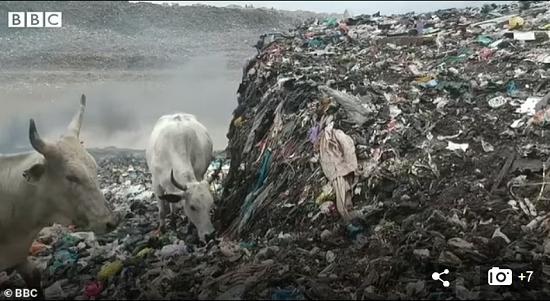 كارثة بيئية في غانا بسبب الملابس البريطانية الرديئة  (6)