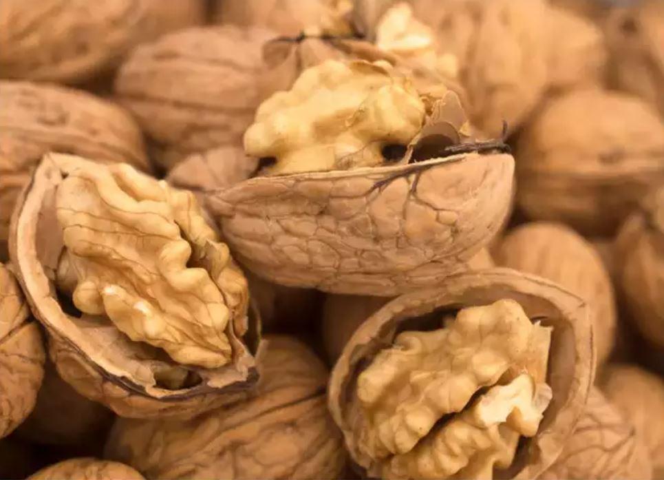 Walnut or walnut