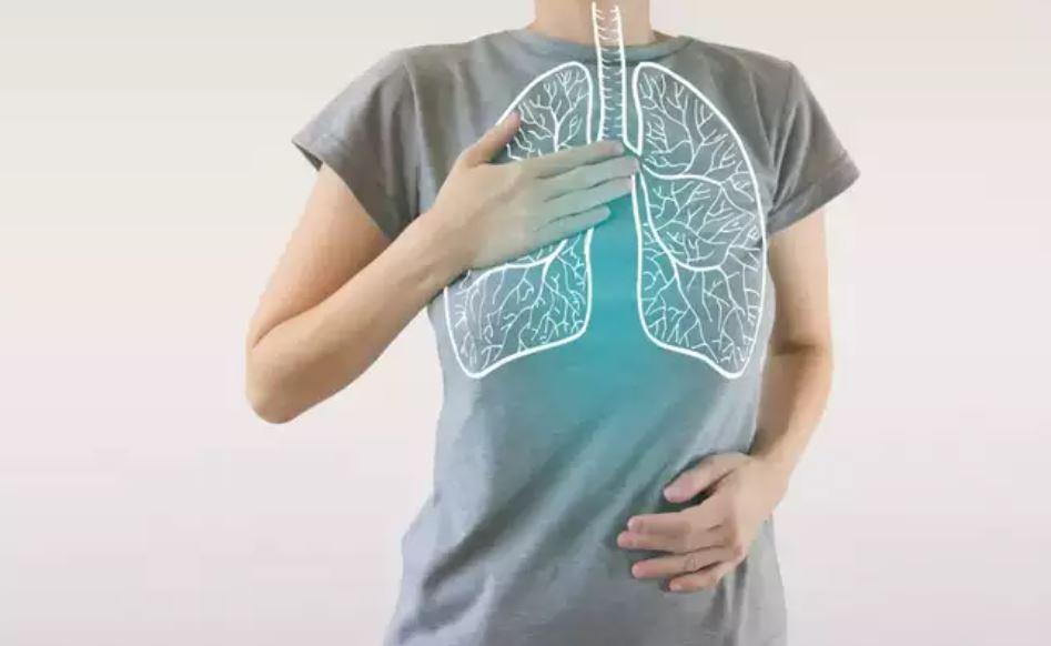 الجهاز التنفسى